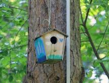 Birdhouse 10