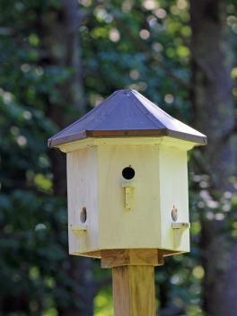 Birdhouse 11