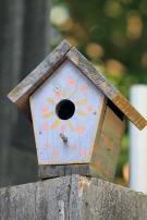 Birdhouse 5