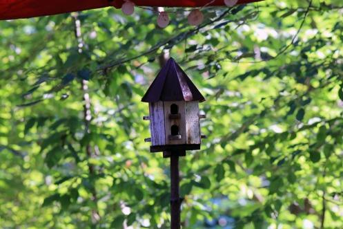 Birdhouse 7