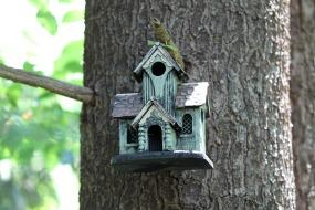 Birdhouse14