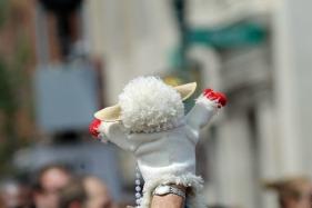 Lamb Chop for LGBT Pride!
