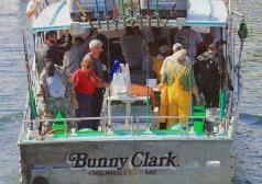 Bringing in the Haul-Perkins Cove-Sponge