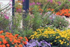 Kittery Garden 2