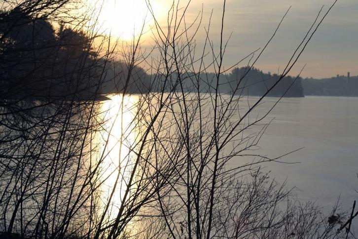 Mist On Spot Pond