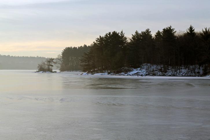 Mist On Spot Pond Too