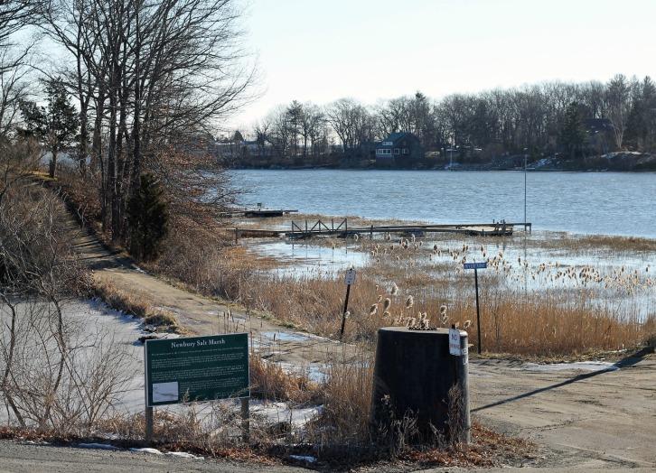 The Salt Marsh, Newbury, Massachusetts