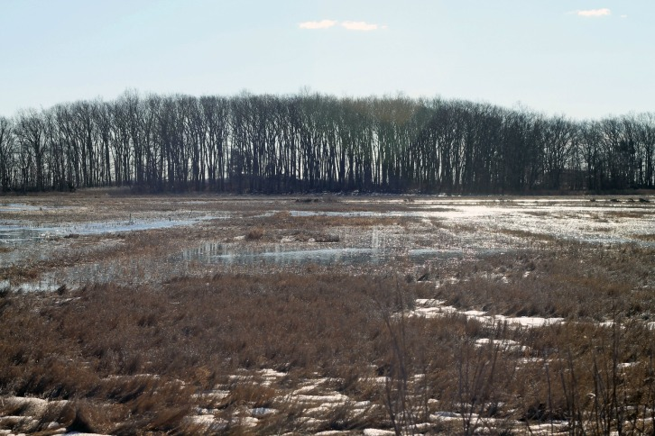 Rough Meadows National Wildlife Refuge 2