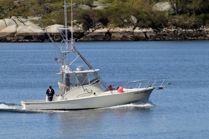 Checking Messages, Gloucester Harbor, MA