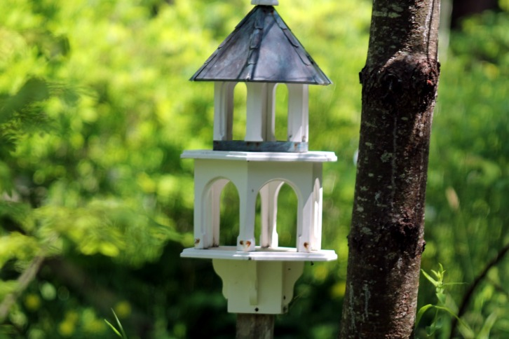 Bird House Two