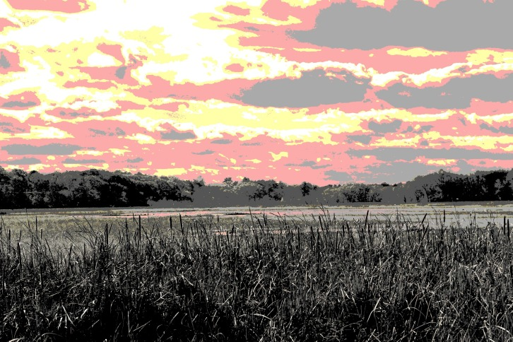 View of Great Meadows (Special Effects)