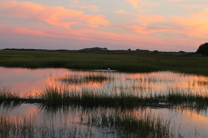 Early Evening, Provincetown Salt Marsh