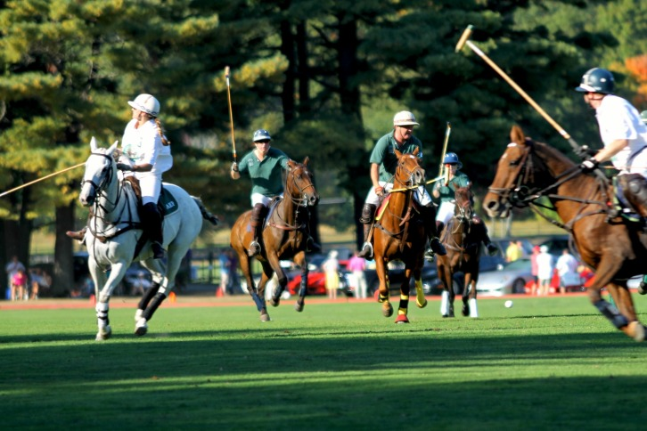 Ferrari Cup Action, Myopia Polo Club, Hamilton, Massachusetts