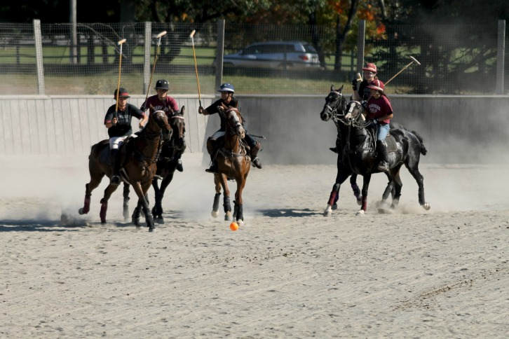 Harvard Women's Polo Scrimmage