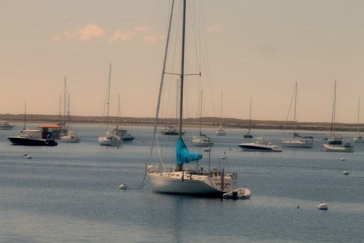 Sails at Rest, Provincetown Harbor