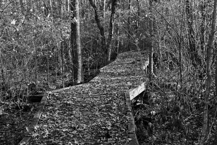 The Crooked Path Again