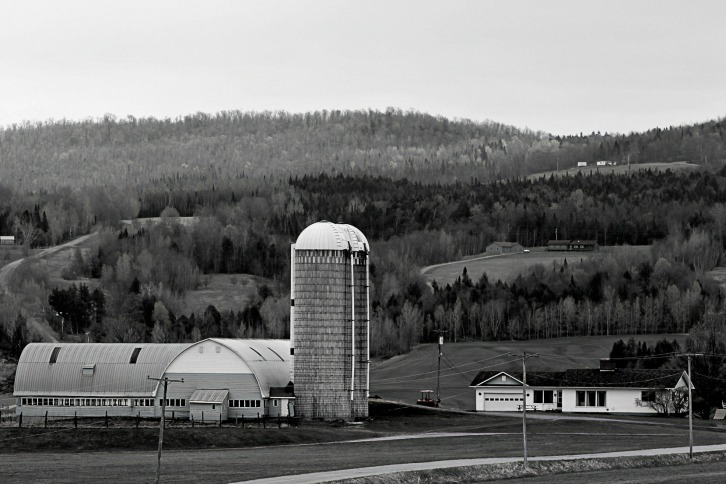 Farmland, Somewhere in Vermont