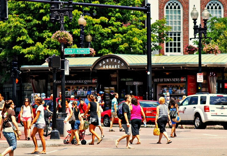 Summer Day in Harvard Square
