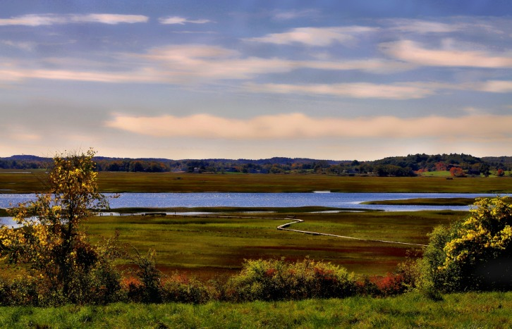 The Salt Marsh, Crane Beach