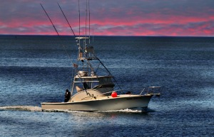 Tuna Hunter, Gloucester Harbor