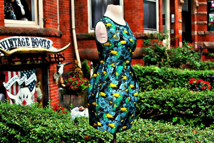The Toucan Dress, Newbury Street