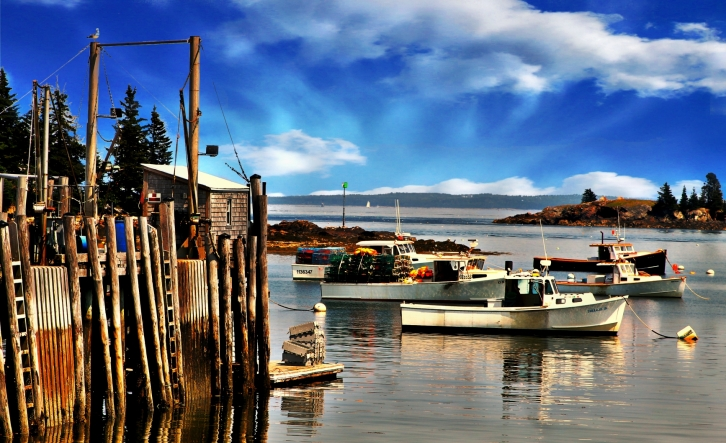 View of Lincolnville Harbor, Maine