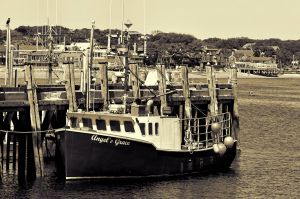 Angel's Grace, Provincetown Harbor