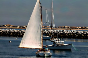 The Carolyn, Provincetown Harbor